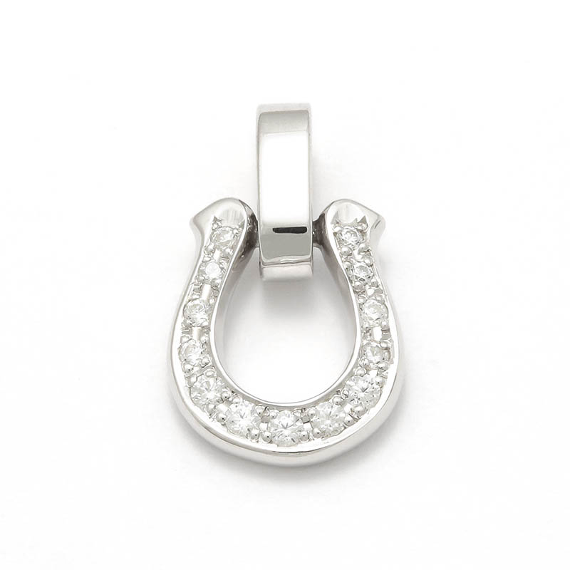 Horseshoe Amulet w/Clear